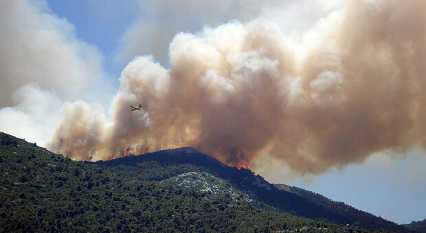 Европа в огне: лесные пожары охватили Турцию, Италию, Грецию, Боснию и Герцеговину