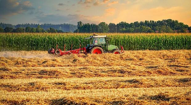 Мінагро суттєво переоцінило вартість землі в Україні: в реальності її ціна на 13 тисяч гривень нижча